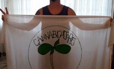 Liberaron al cannabicultor detenido por la tenencia de  plantas de marihuana