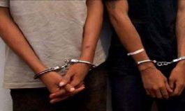 Pareja marplatense detenida por robos en Necochea