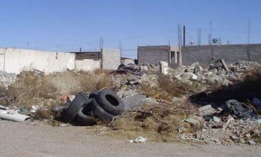 El municipio limpiará los terrenos abandonados y empezará a intimar a los propietarios
