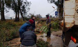 Cayeron más 140 milímetros de lluvia y sigue el alerta. Familias autoevacuadas, árboles y postes caídos
