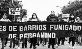 Fallo histórico: la Justicia Federal prohibió las fumigaciones a 3 mil metros en Pergamino